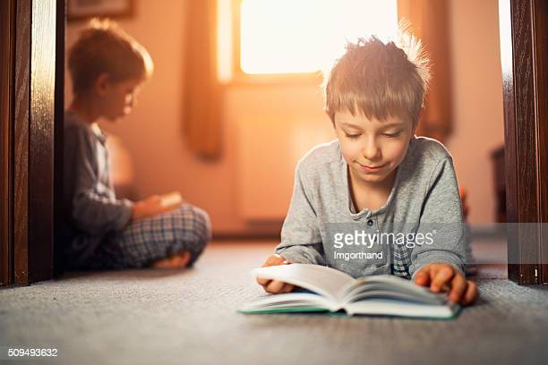 Two brothers reading books in the morning