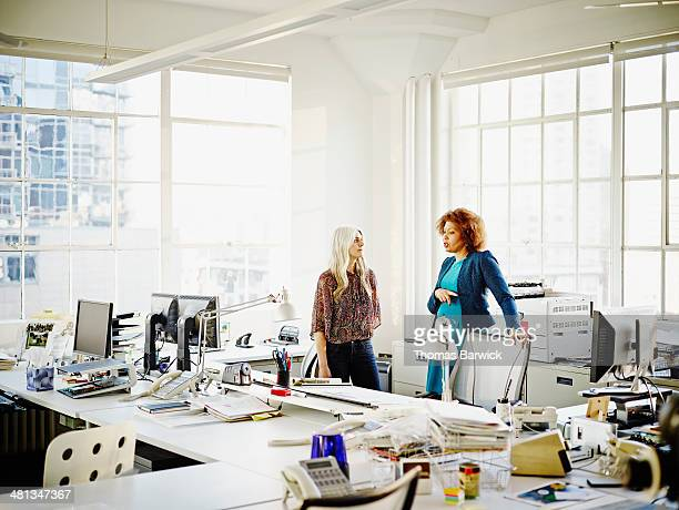 Two businesswomen discussing project in office