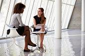 Two Businesswomen Meeting In Reception Of Modern Office