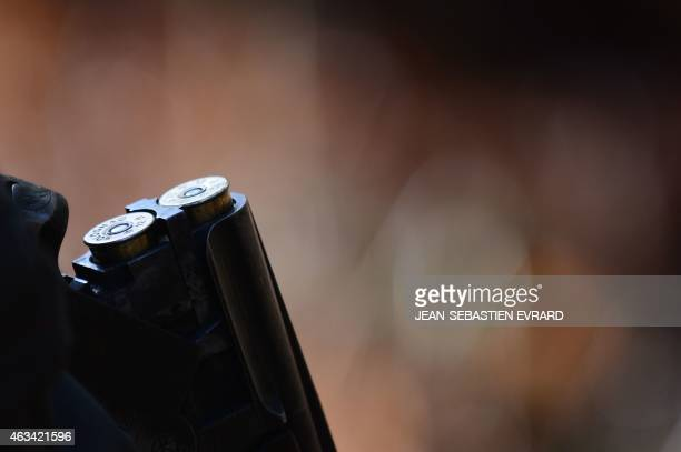 Two cartridges are loaded in a shotgun during a big game hunt in a wood on February 14 2015 in La ChapelleGlain western France AFP PHOTO /...