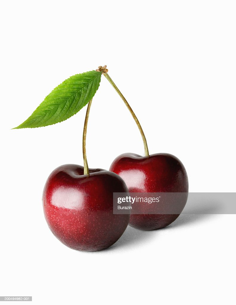 Two cherries and stalk, against white background, close-up : Stock Photo