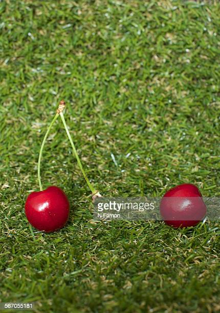 Two cherries- separated