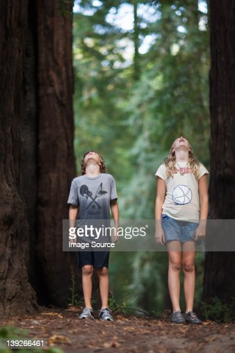 Two children looking up at a tree in awe : Stock Photo