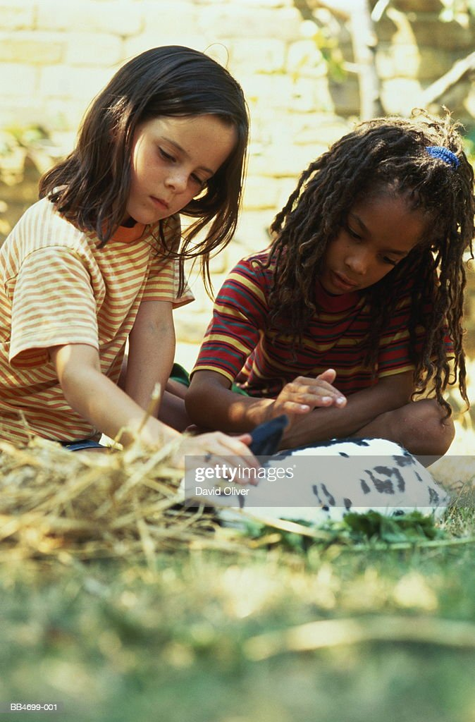 Two children (5-7) petting rabbit in sunny garden : Stock Photo