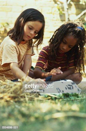 Two children (5-7) petting rabbit in sunny garden : Stockfoto