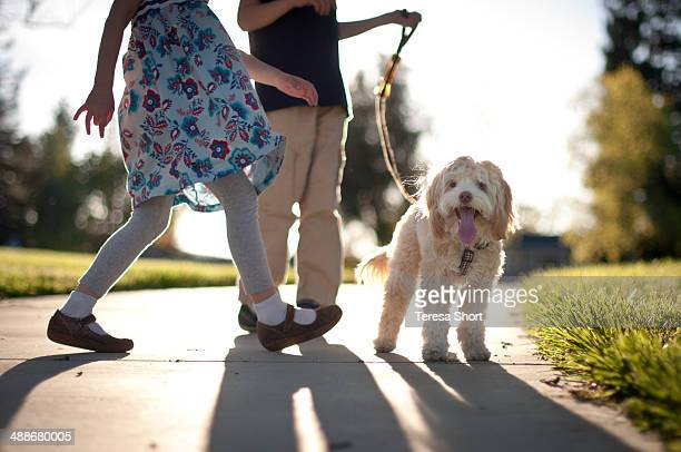 Two Children Walking Dog