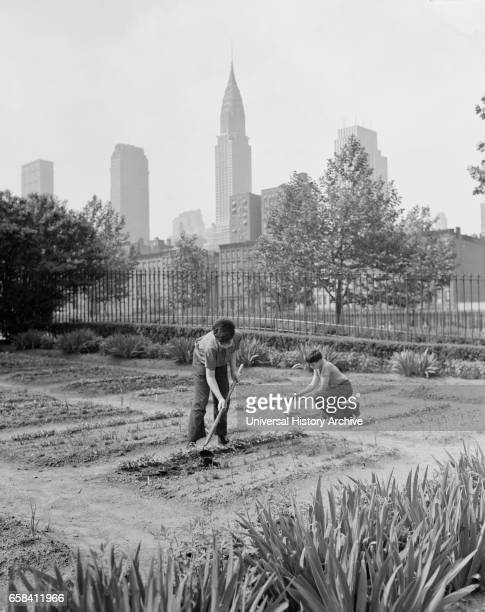 Two Children Working in School Victory Garden First Avenue between ThirtyFifth and ThirtySixth Streets New York City New York USA Edward Meyer for...