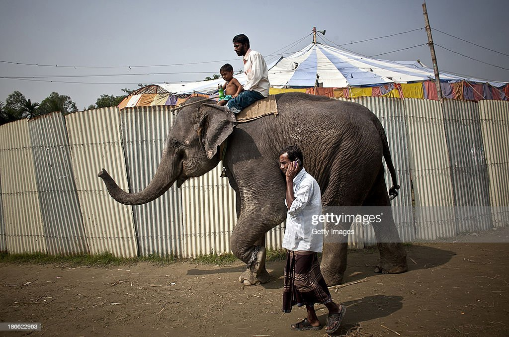 Two circus performers ride an elephant past the circus tent of the Olympic Circus, November 1, 2013 in Jamsha, Bangladesh. Generations of low income families are born into circuses with rarely the hope of ever working in different profession or escaping the harsh realities of the circus. The children, often very young, are trained to be full working members usually without the opportunity for an education. As modernization slowly takes over landscape of Bangladesh, the circus is a dying art form and is moving further and further away from mainstream entertainment.
