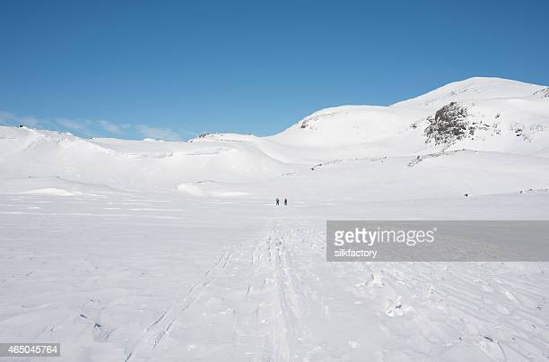 Two cross-country skiers on a mountain plateau