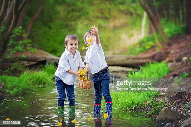 Two cute boys on a pond, throwing dandelions