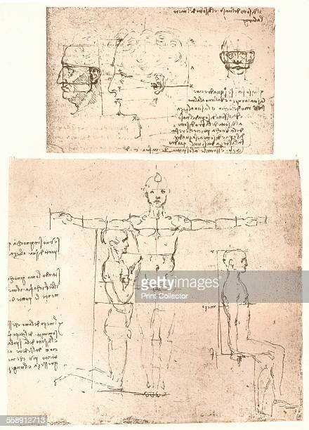 Two drawings illustrating the theory of the proportions of the human figure c1472c1519 From The Literary Works of Leonardo Da Vinci Vol 1 by Jean...