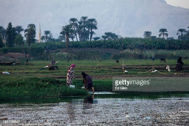 Two Egyptian women work in the shallows of the Nile River on October 23 2013 near Luxor Egypt Luxor one of Egypt's major tourist hotspots has...