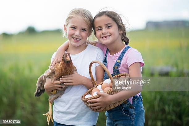 Two elementary age girls are outside on the farm and
