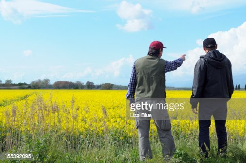 Two Farmers Pointing Canola Field