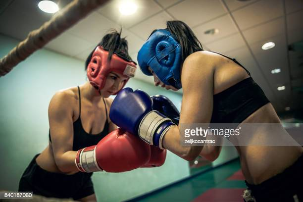 Two female boxers greeting each other in the ring