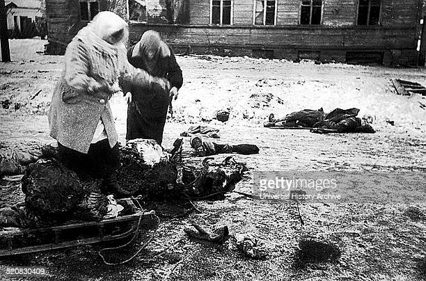 Two female figures collect the remains of a dead horse for food during the Siege of Leningrad Germans attacked Leningrad during the Second World War...