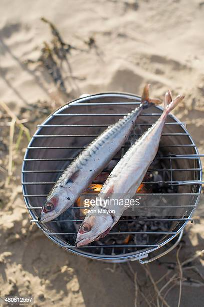 Two fish cooking over hot coals
