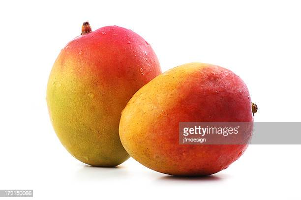 Two fresh ripe mangoes on a white background