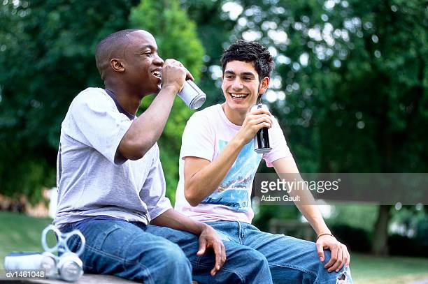Two Friends Sit Side-by-Side in a Park Drinking Beer