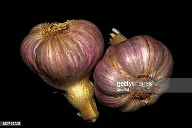 Two Garlic Bulbs on Black Background
