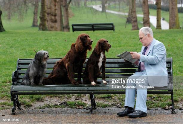 Two German long haired pointers and a Pyrenean sheepdog watch a commuter read his newspaper in London's Green Park today during a photocall to...