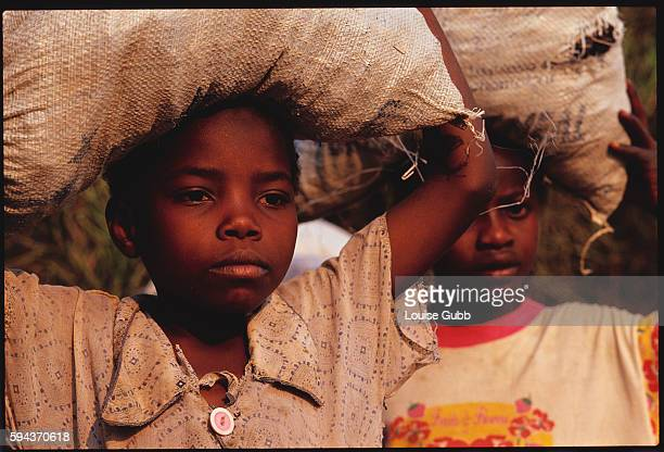 Two girls carry bags of treated human waste home from Kitwe Sewerage Plant The waste can be used as fertilizer in vegetable gardens Buying or growing...