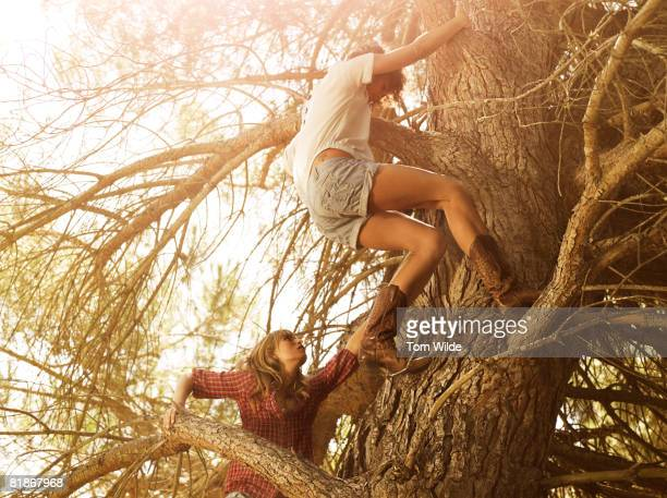 Two girls climbing a tree