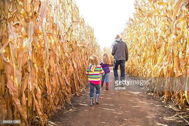 Zwei Mädchen & Vater zu Fuß durch den Herbst Corn Maze