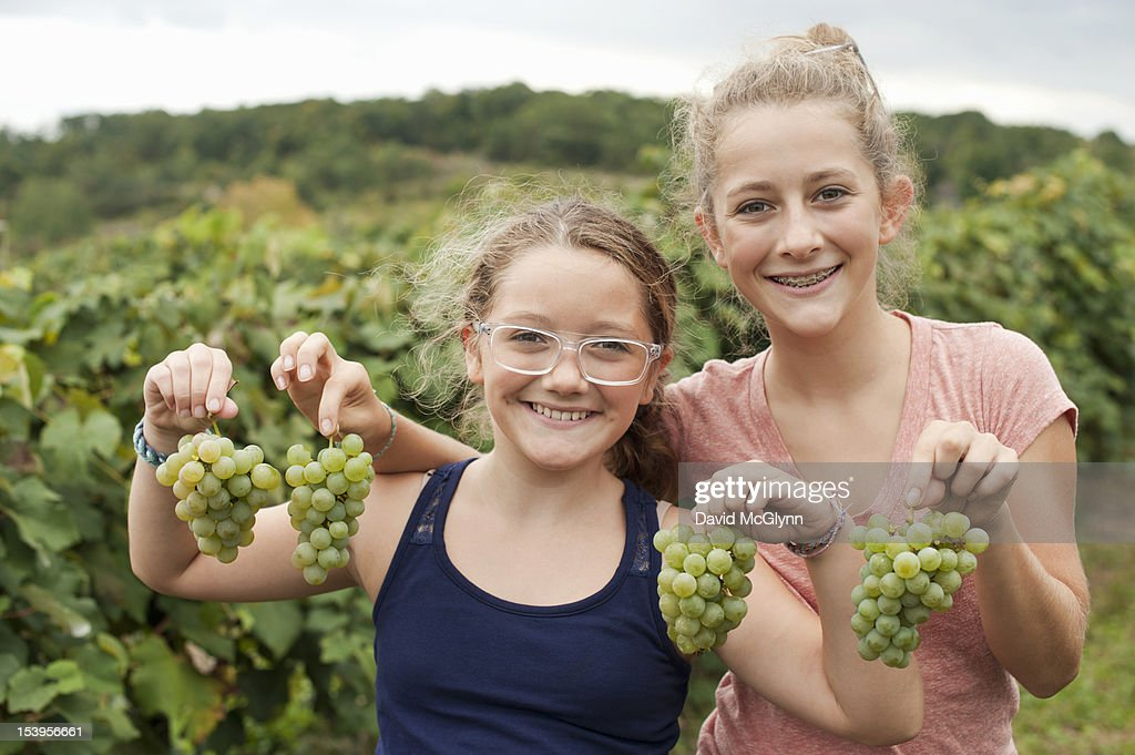 Two girls holding Niagara grapes in an orchard : Stock Photo