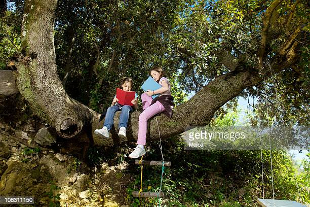 Two girls reading sitting on a tree branch