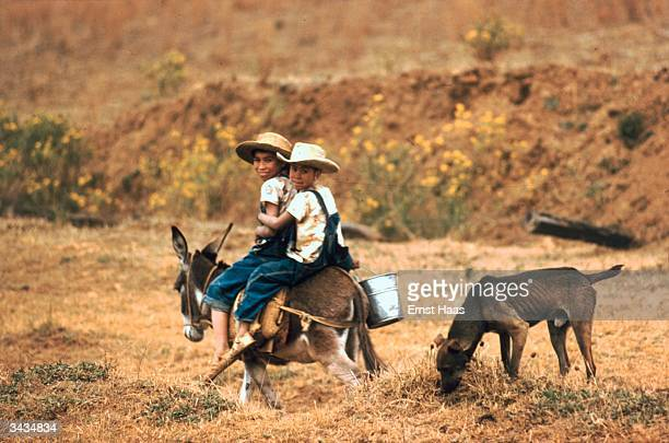 Two girls riding a donkey in Mexico