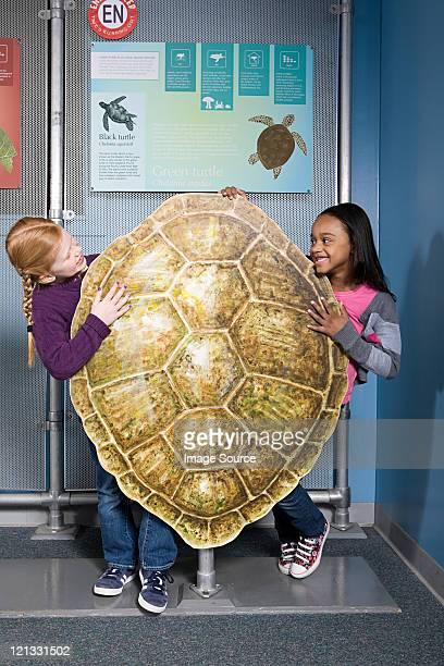 Zwei Mädchen stehen hinter der Grünen Meeresschildkröte shell
