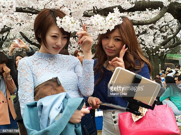 Two girls taking a selfie with beautiful cherry blossom in a Tokyo park