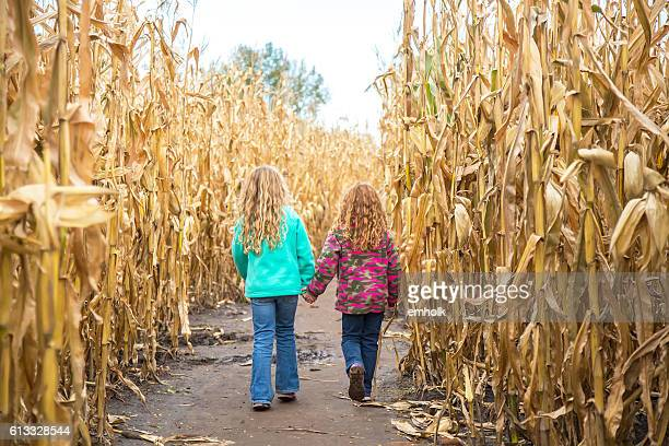 Two Girls Walking Through Corn Maze in Autumn