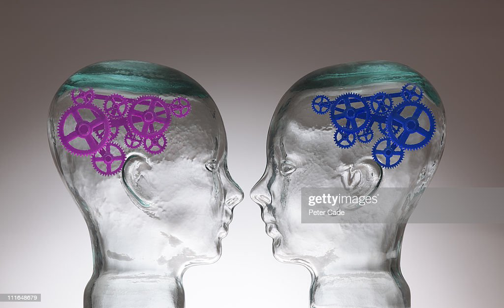 two glass heads, one with pink cogs, one with blue : Stock Photo