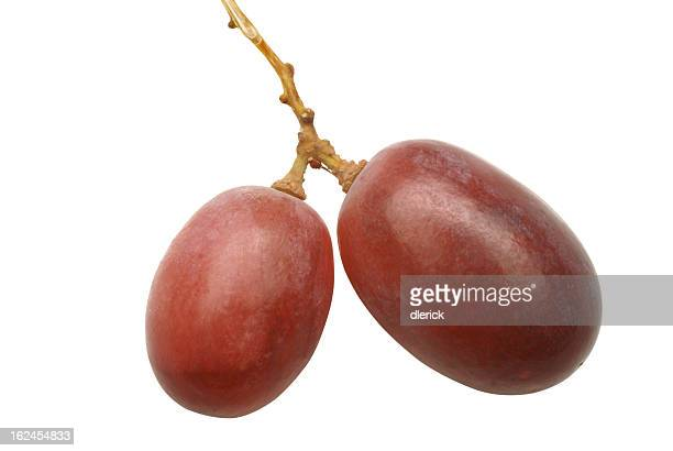 two grapes on vine-clipping path