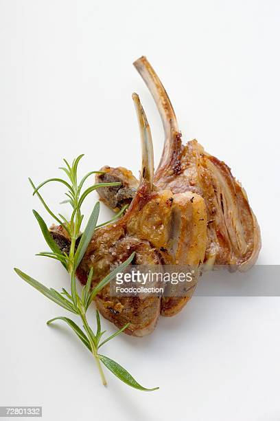 Two grilled lamb cutlets and a sprig of rosemary