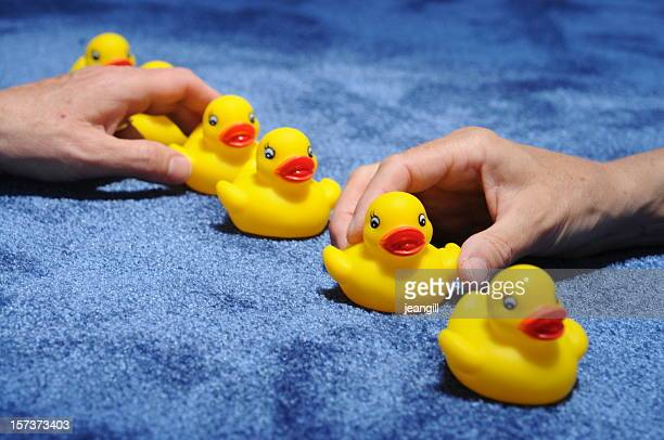 two hands get ducks in a row
