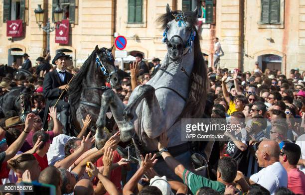 Two horses rear in the crowd during the traditional San Juan festival in the town of Ciutadella on the Balearic Island of Menorca on the eve of Saint...