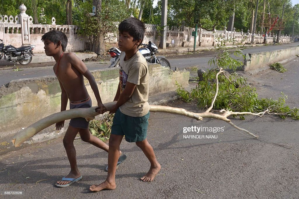 Two Indian boys carry a tree branch that fell after strong winds and heavy rain in Amritsar on May 30, 2016. / AFP / NARINDER