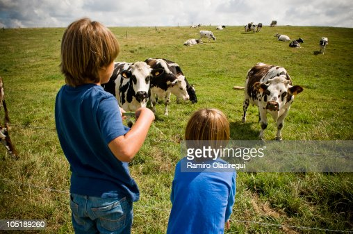 Two Kids with cow