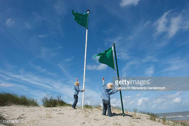 Two little brothers with flags by sea