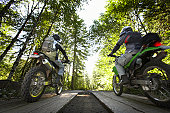 Two male bikers riding in forest, rear view