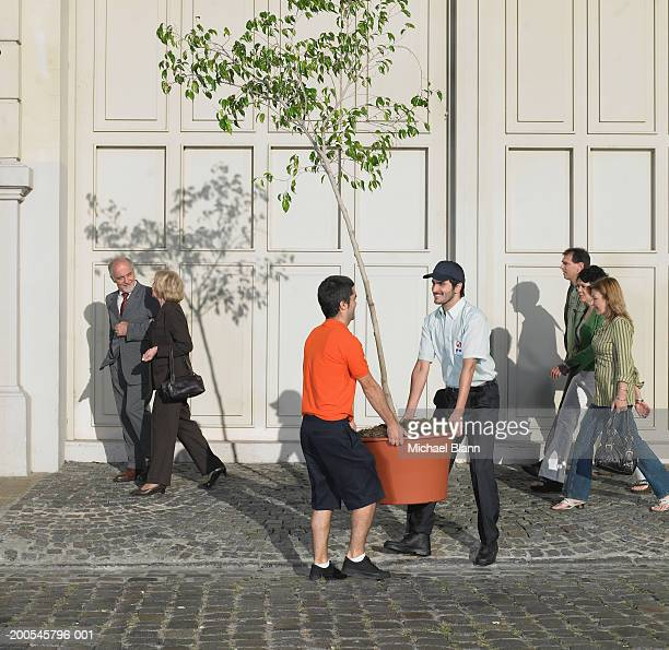 Two man carrying plant in street, people walking in background