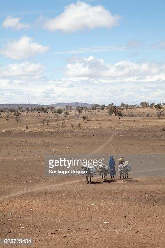 Two Masai going to the market in Makuyuni