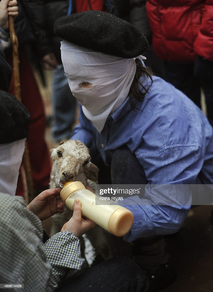 Two masked children feed a lamb during the ancient carnival of Zubieta, in the northern Spanish province of Navarra province, on January 28, 2014. The yearly three day festivities, revolving mainly around agriculture and principally sheep hearding, run on the last Sunday, Monday and Tuesday of January where Navarra Valley locals from three villages dress up and participate in a variety of activites as they perform a pilgrimage through each village.