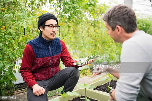 Two mature male farmers having a meeting in a greenhouse
