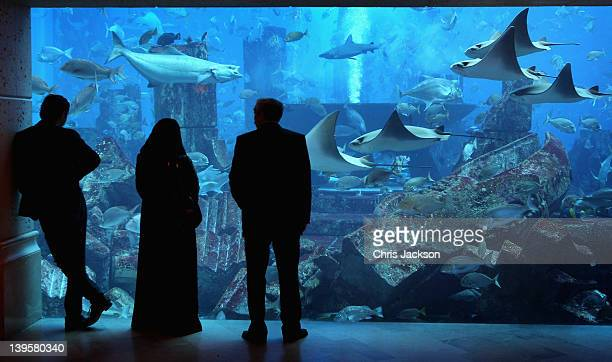 Two men and a woman in traditional dress watch the fish in the giant tank at Atlantis the Palm Hotel on February 23 2012 in Dubai United Arab...