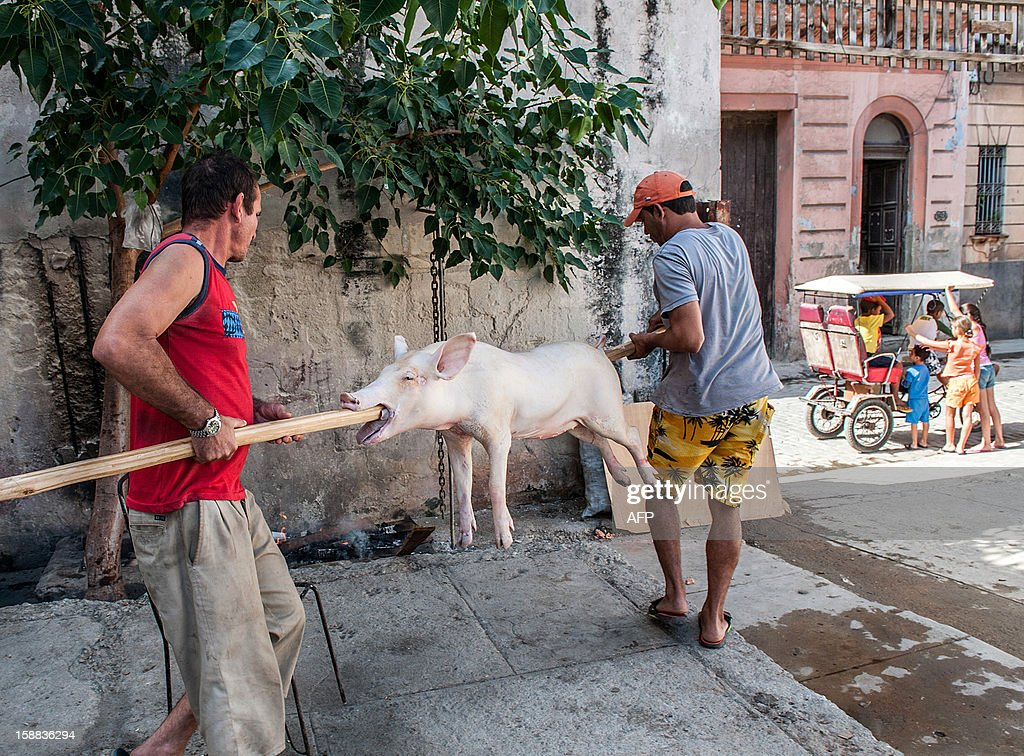 Two men carry a pig to be roasted for New Year´s Eve celebrations in Havana on December 31, 2012. AFP PHOTO/YAMIL LAGE