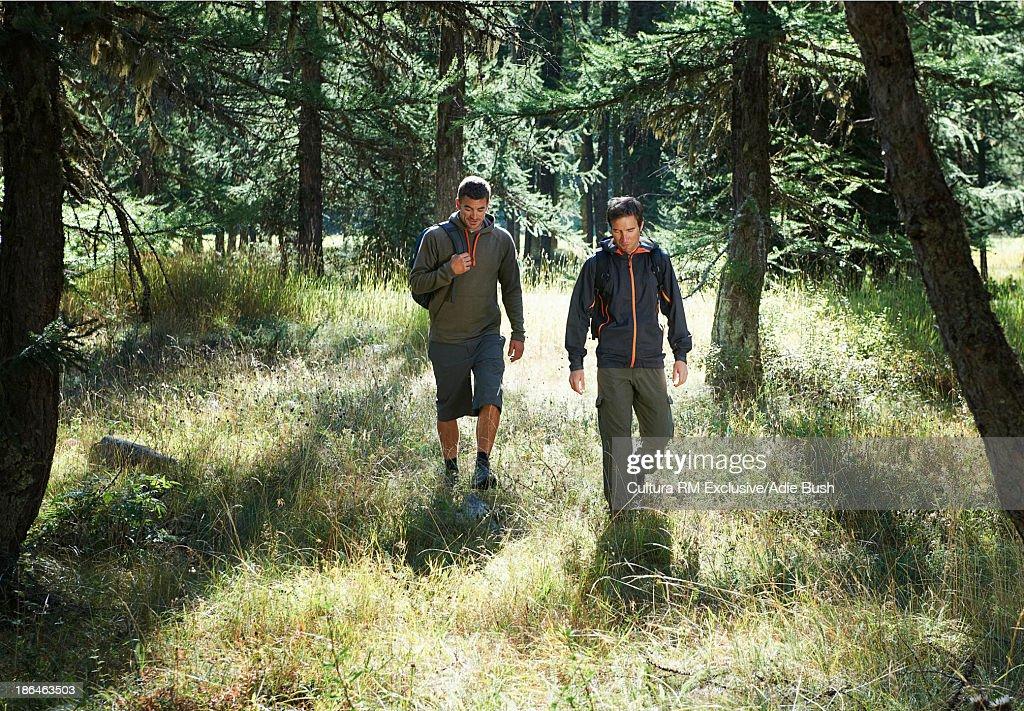 Two men hiking through forest, Chamonix, Haute Savoie, France : Stock Photo